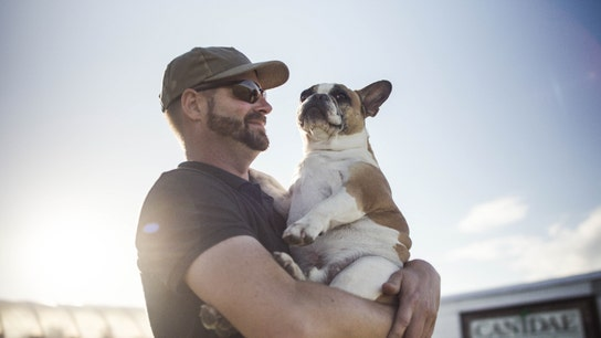 Pampered pets get farm to table food