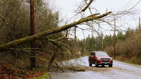 Crews work to restore power after Pacific Northwest storm