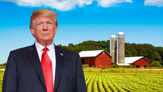 US-China trade war: Trump pledges to support American farmers