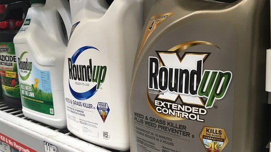 Monsanto vows appeal after losing Roundup cancer claim case, ordered to pay $2B in damages