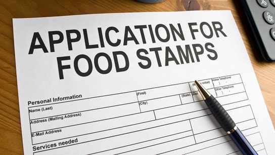 How this Minnesota millionaire received 'hundreds of dollars' in food stamps