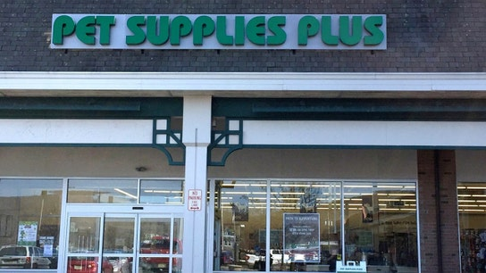 Pet Supplies Plus recalls pig ear dog treats over possible salmonella contamination