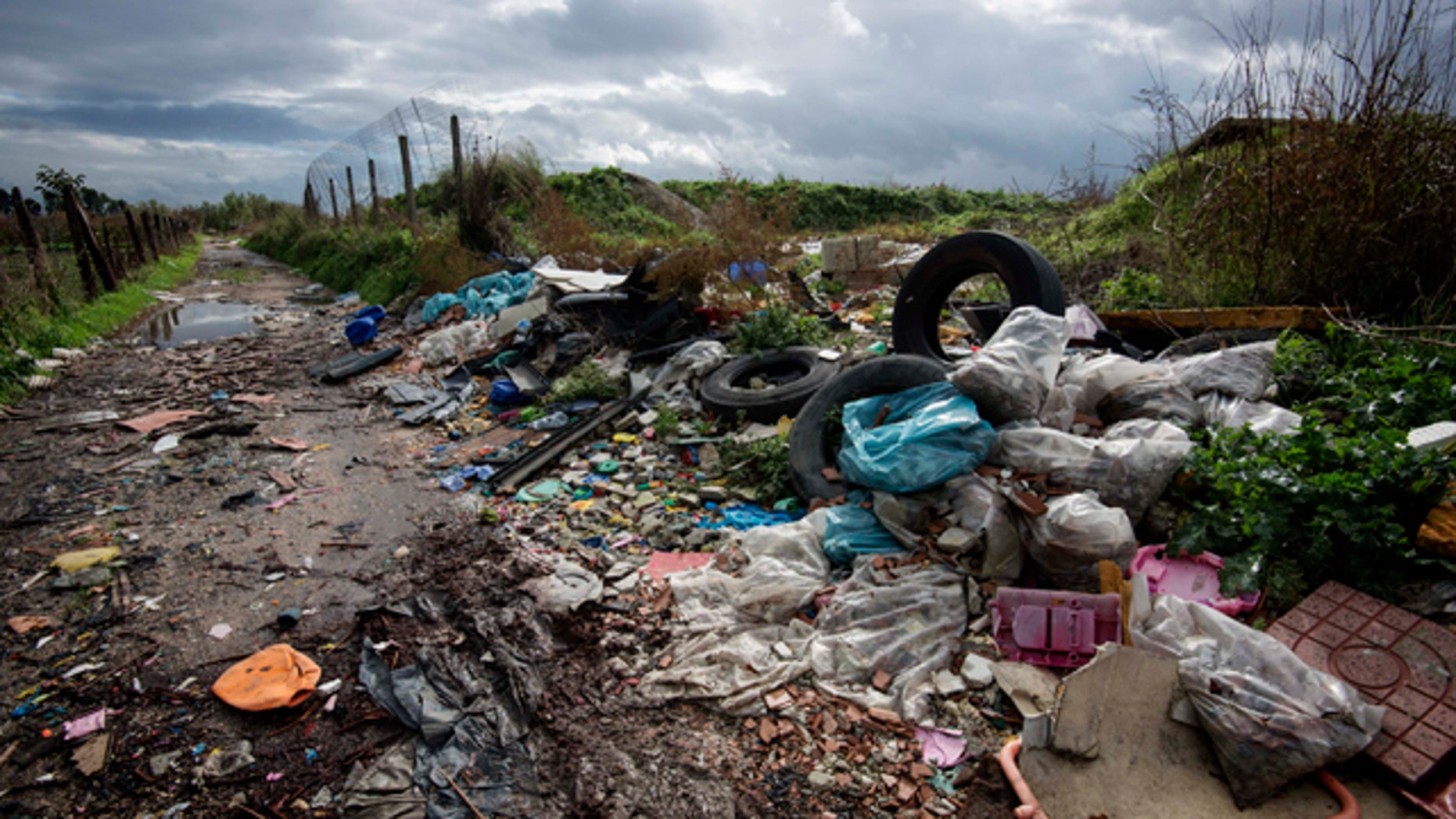 FILE -- In this Nov. 18, 2013 photo, rubbish is piled up on the edge of cultivated land near Caivano, in the surroundings of Naples, southern Italy.