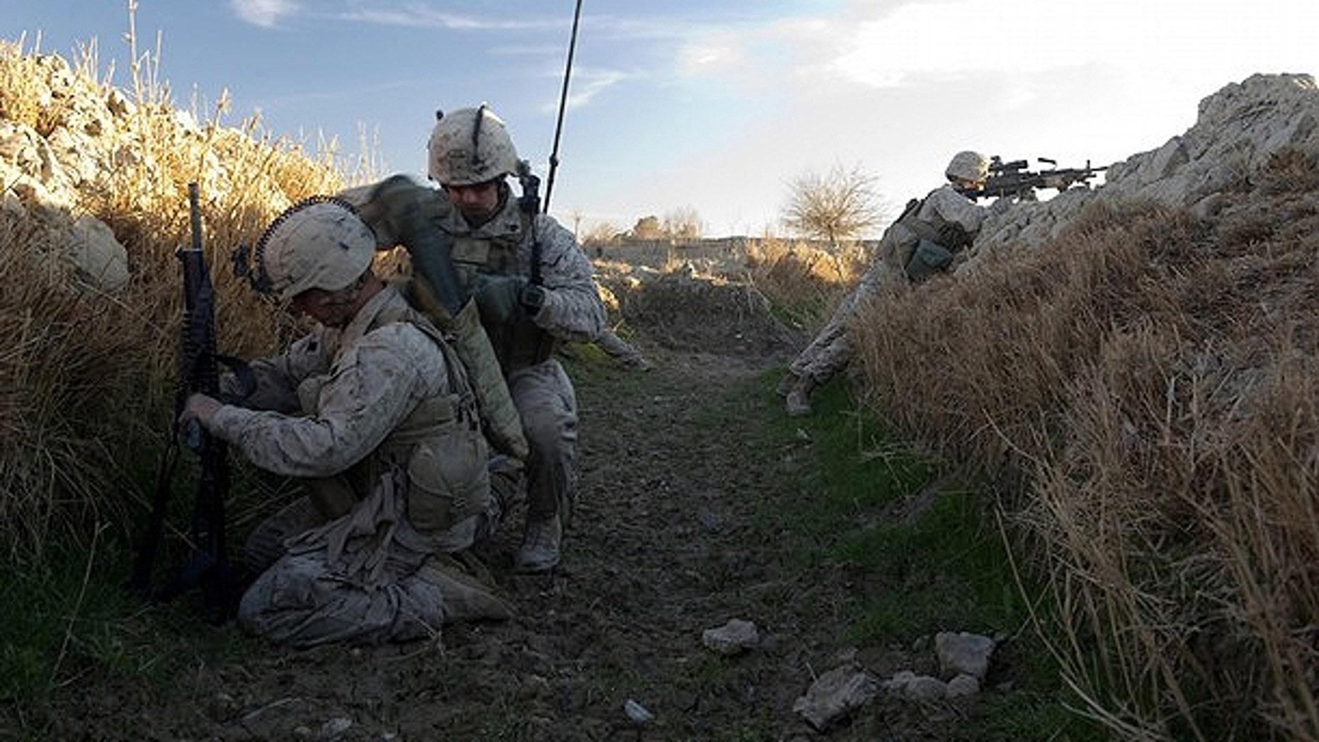Feb. 8: U.S. Marines from 1st Battalion, 8th Marines, Bravo company patrol around Mirage patrol base, Musa Qala District, in Afghanistan's Helmand province.