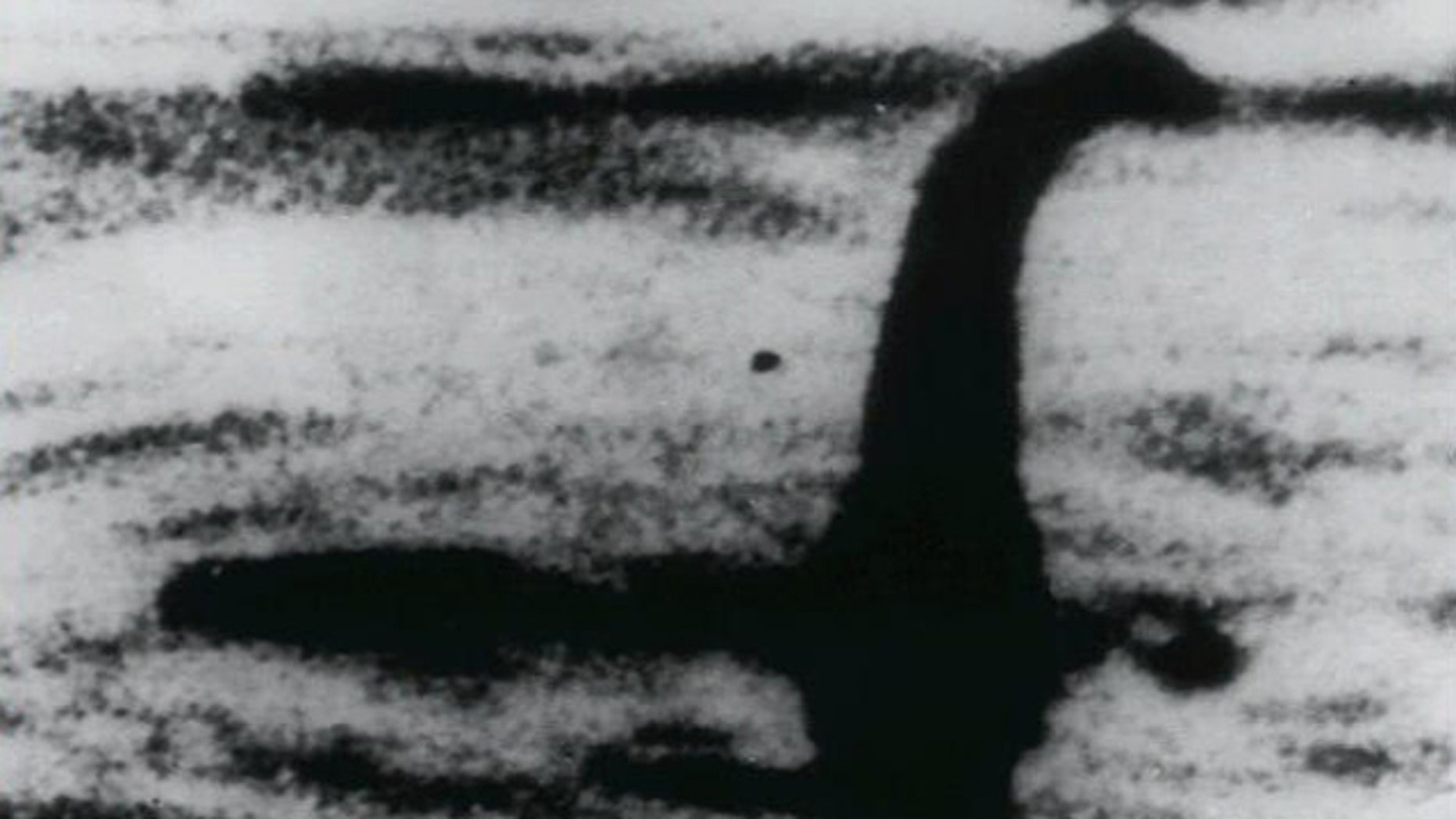 """Unproven photo of the """"Loch Ness Monster"""""""