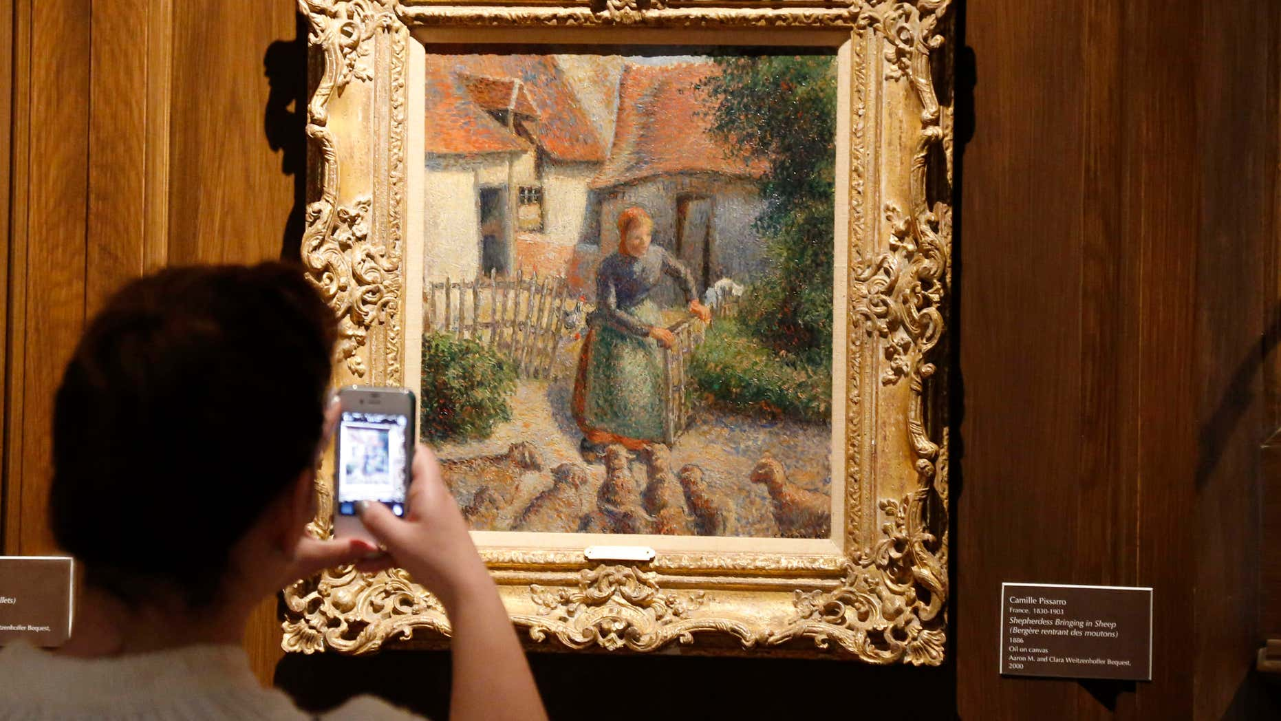 "FILE - In this Feb. 8, 2014, file photo, a visitor to the Fred Jones Jr. Museum of Art at the University of Oklahoma in Norman, Okla., takes a photograph of a piece called ""Shepherdess Bringing in Sheep"" by French impressionist artist Camille Pissarro, at the museum."