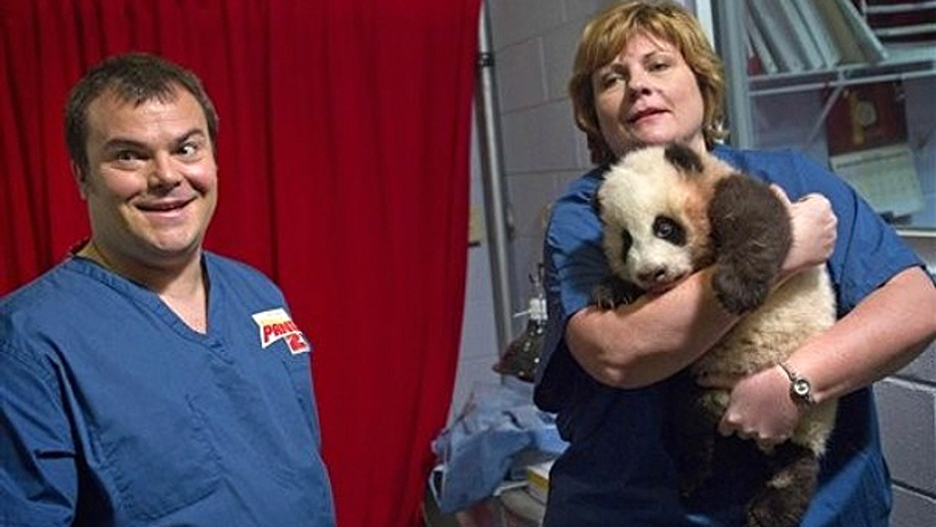Feb. 15: Dr. Hayley Murphy, director of veterinary services at Zoo Atlanta, right, brings out a 3-month-old giant panda cub as actor Jack Black looks on before a naming ceremony in Atlanta.