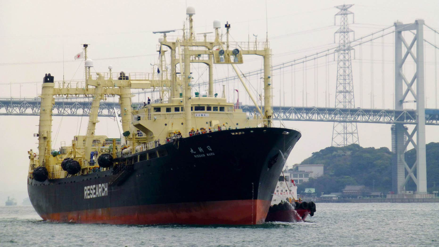 FILE - In this April 5, 2014 file photo, Japanese whaling vessel Nisshin Maru returns to a port, from the Antarctic Sea, in Shimonoseki, western Japan.