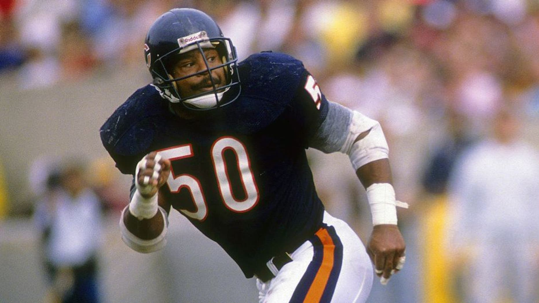 CHICAGO, IL - CIRCA 1980's: Middle Linebacker Mike Singletary #50 of the Chicago Bears in action during a circa late 1980's NFL football game at Soldier Field in Chicago, Illinois. Singletary played for the Bears from 1981-92. (Photo by Focus on Sport/Getty Images)