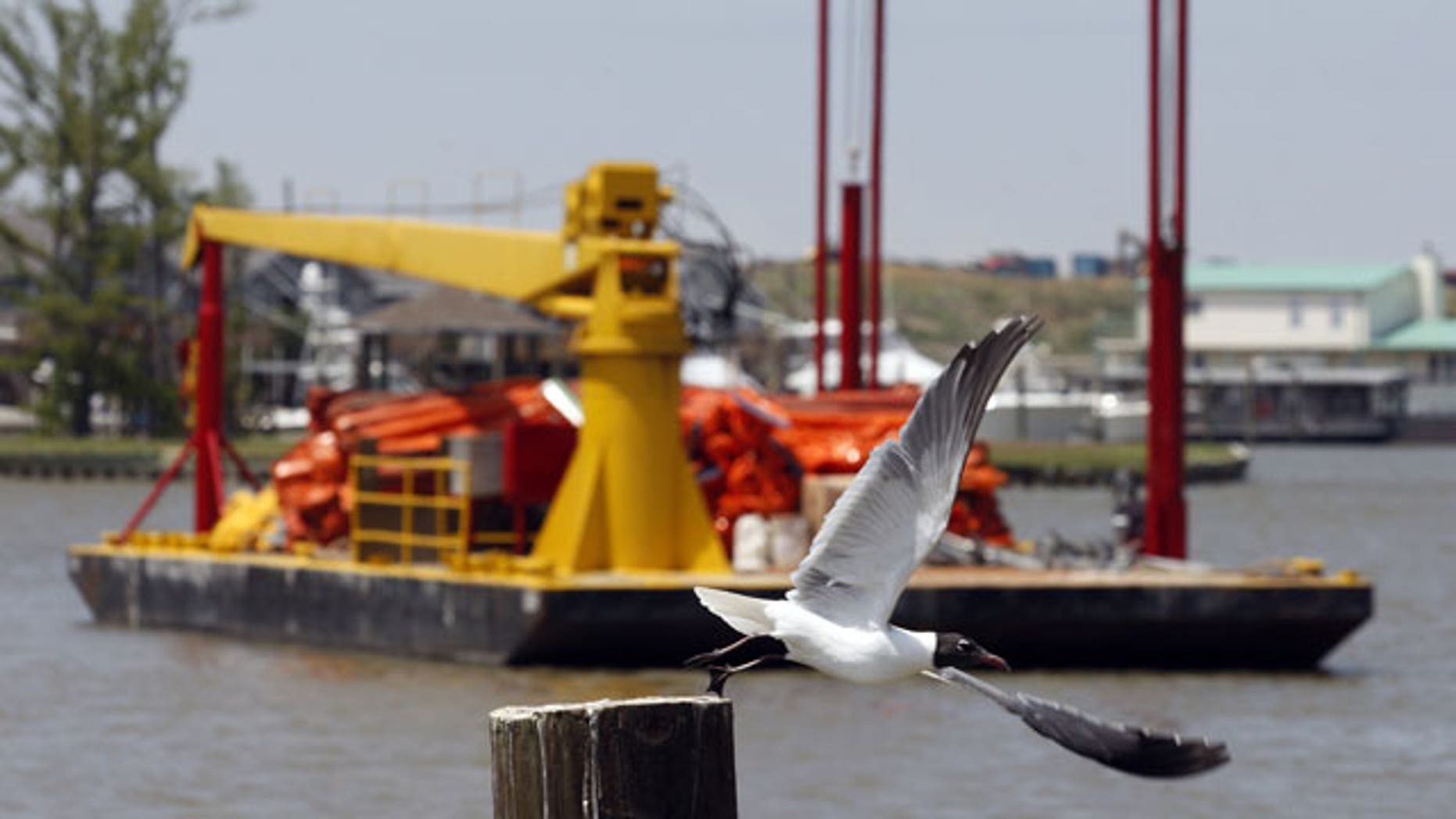 A bird flies off of a post near a barge carrying oil booms to be deployed to assist in the containment of oil from a leaking pipeline in the Gulf of Mexico near the coast of Louisiana in Venice, La., Thursday, April 29, 2010. The leak resulted from last week's explosion and collapse of the Deepwater Horizon oil rig.