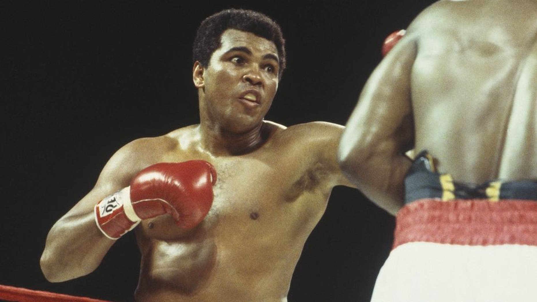 NASSAU - DECEMBER 11: Muhammad Ali throws a left hook at Trevor Berbick at the Queen Elizabeth Sports Centre on December 11, 1981 in Nassau, Bahamas. Berbick defeated Ali in the tenth round. (Focus on Sport/Getty Images)