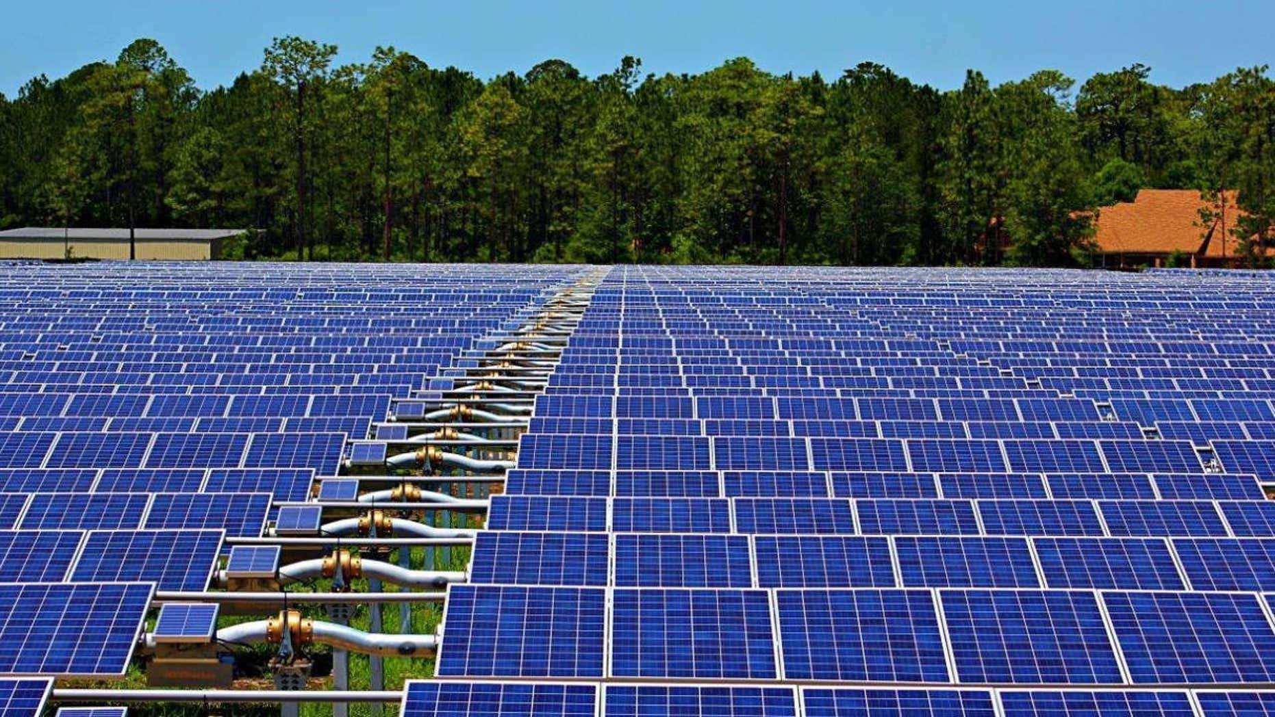 Report: Trump suggests solar panels for border | Fox News