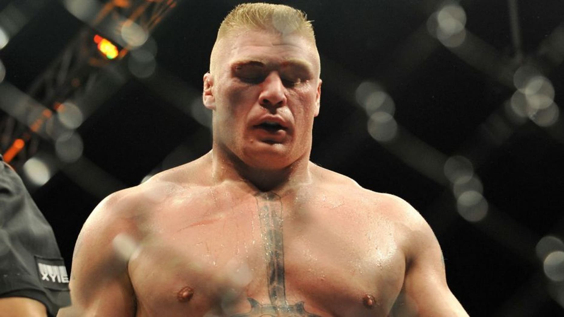 punches at the UFC 91: Couture vs. Lesnar at the MGM Garden Arena on November 15, 2008 in Las Vegas, Nevada.