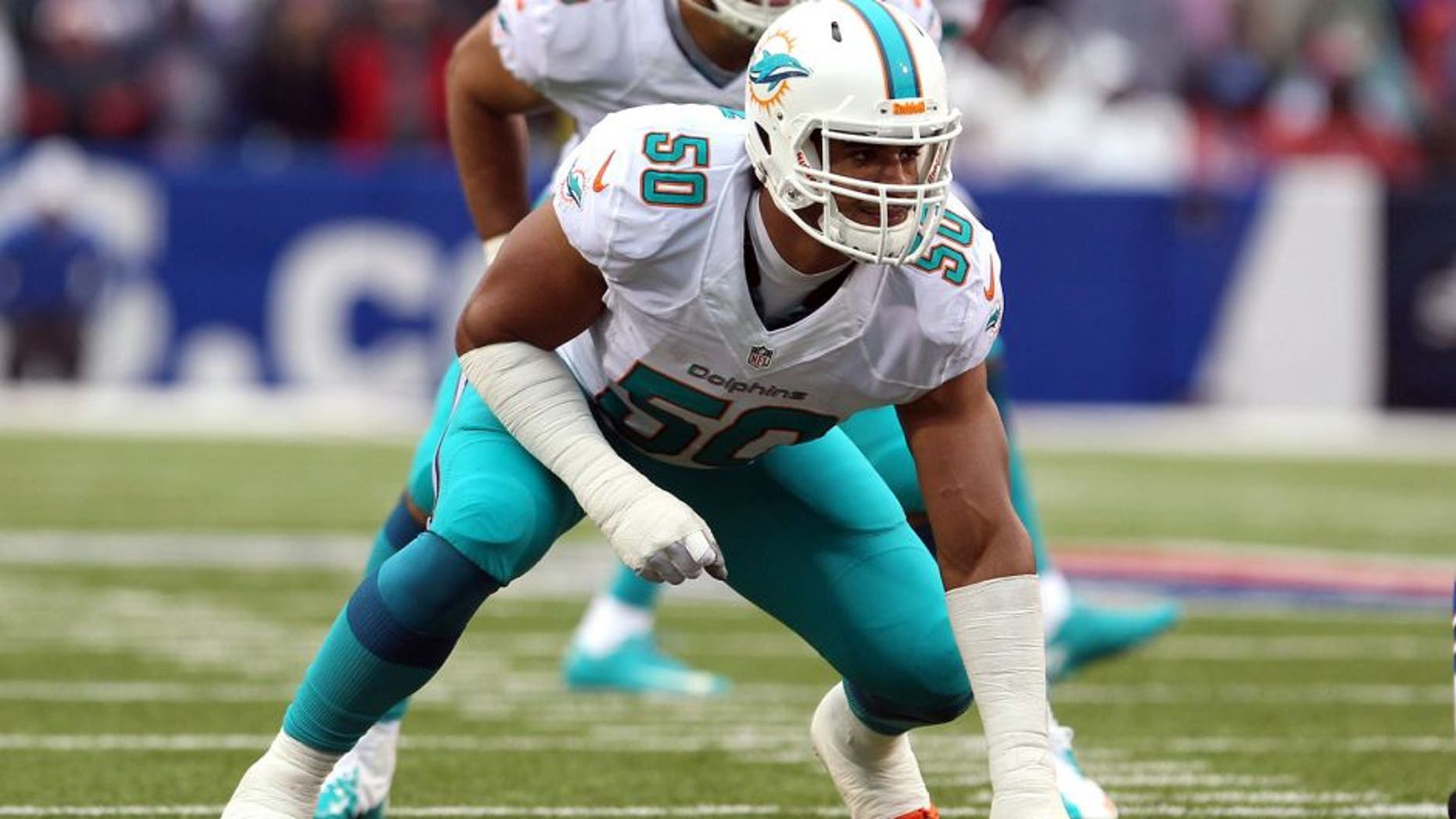 Dec 22, 2013; Orchard Park, NY, USA; Miami Dolphins defensive end Olivier Vernon (50) waits for the snap against the Buffalo Bills at Ralph Wilson Stadium. Mandatory Credit: Timothy T. Ludwig-USA TODAY Sports