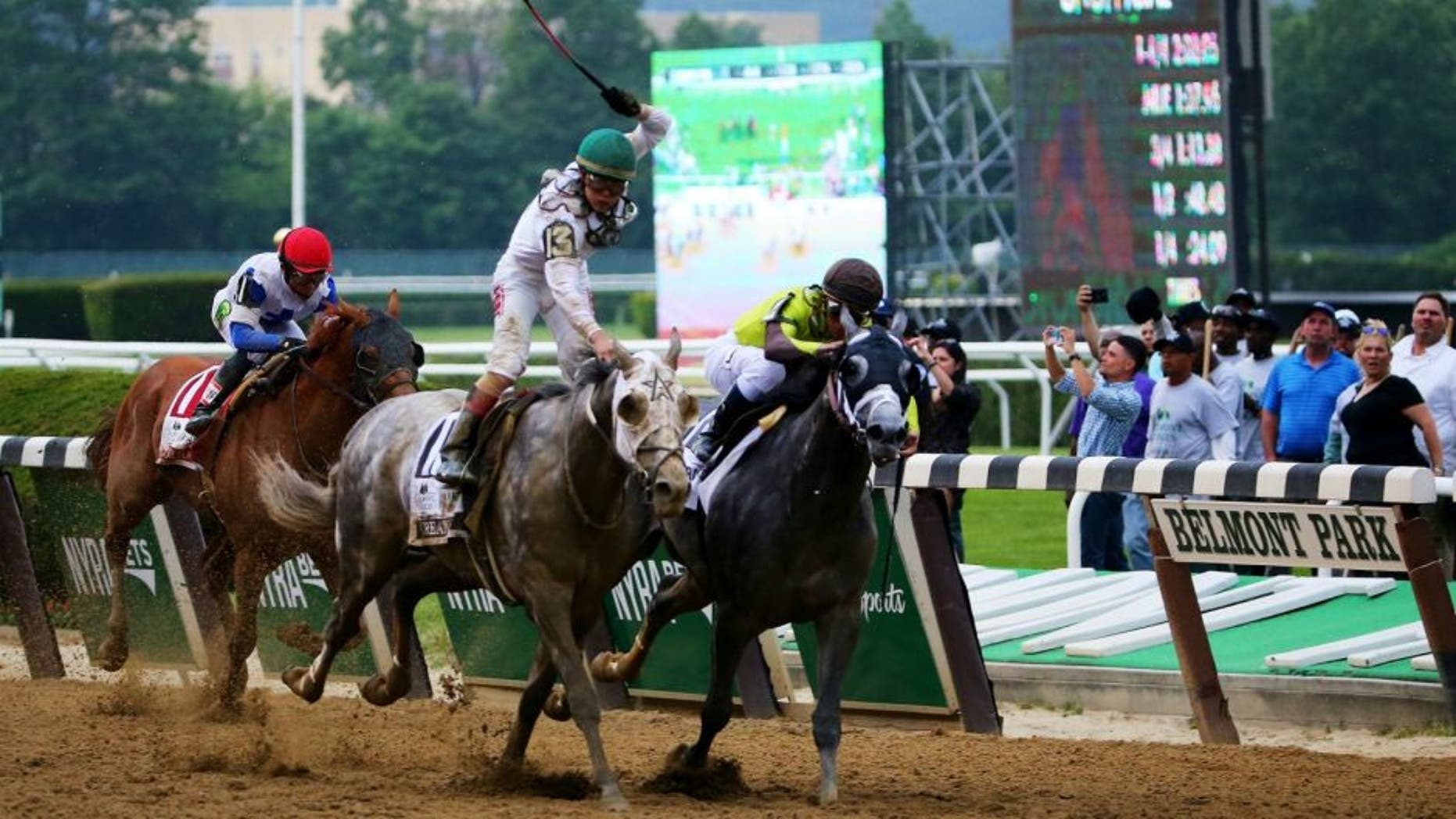 during the The 148th running of the Belmont Stakes at Belmont Park on June 11, 2016 in Elmont, New York.
