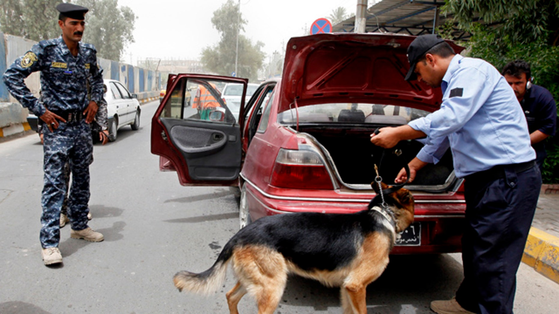 June 23: An Iraqi policeman uses a dog to search a car at a checkpoint in Baghdad, Iraq.