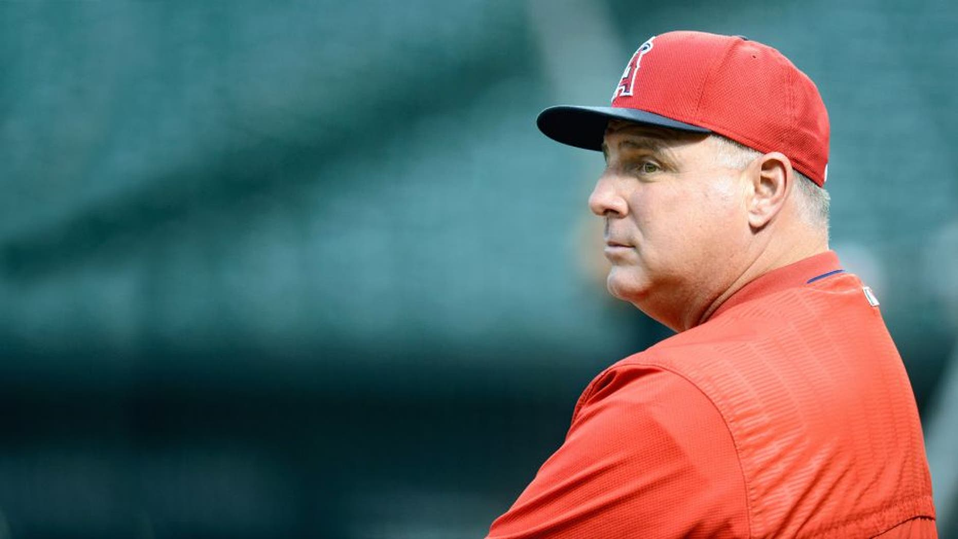 BALTIMORE, MD - MAY 16: Manager Mike Scioscia #14 of the Los Angeles Angels watches batting practice before the game against the Baltimore Orioles at Oriole Park at Camden Yards on May 16, 2015 in Baltimore, Maryland. (Photo by G Fiume/Getty Images)