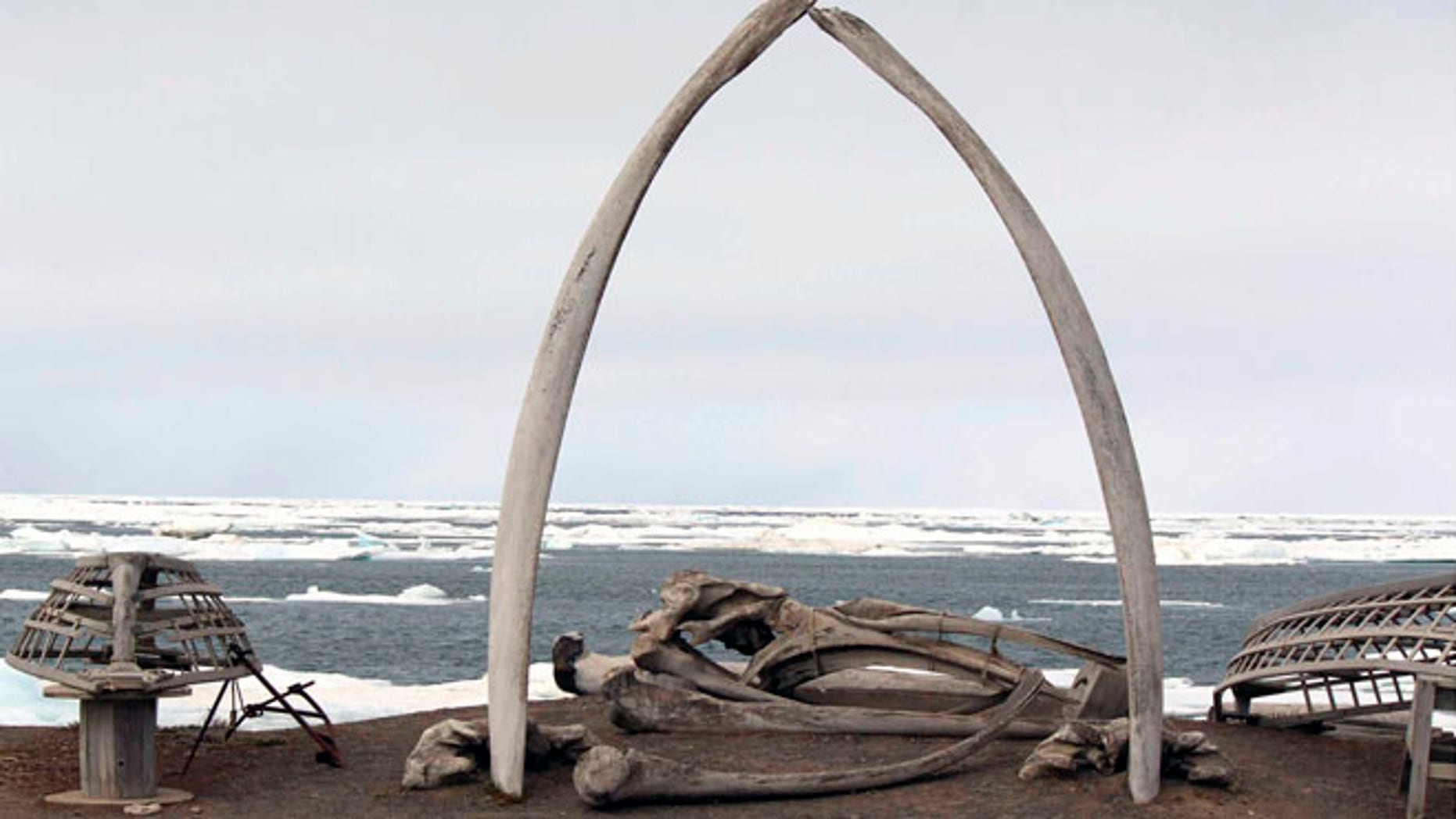 July 16, 2012: A whalebone arch sits on the Barrow, Alaska, shoreline as ice floats in the Arctic Ocean in the background.