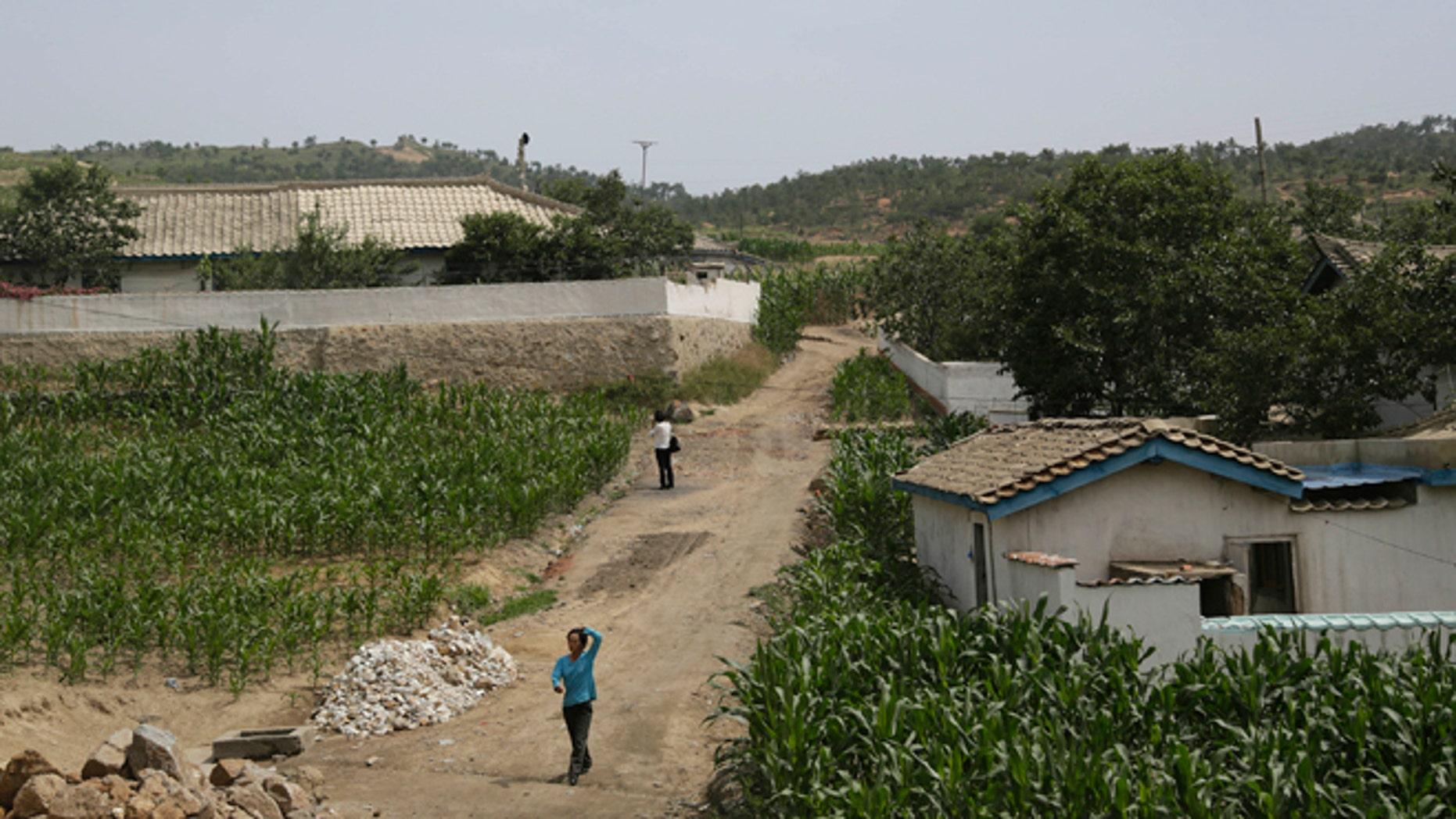 June 24, 2015: People walk between corn fields in South Hwanghae, North Korea.