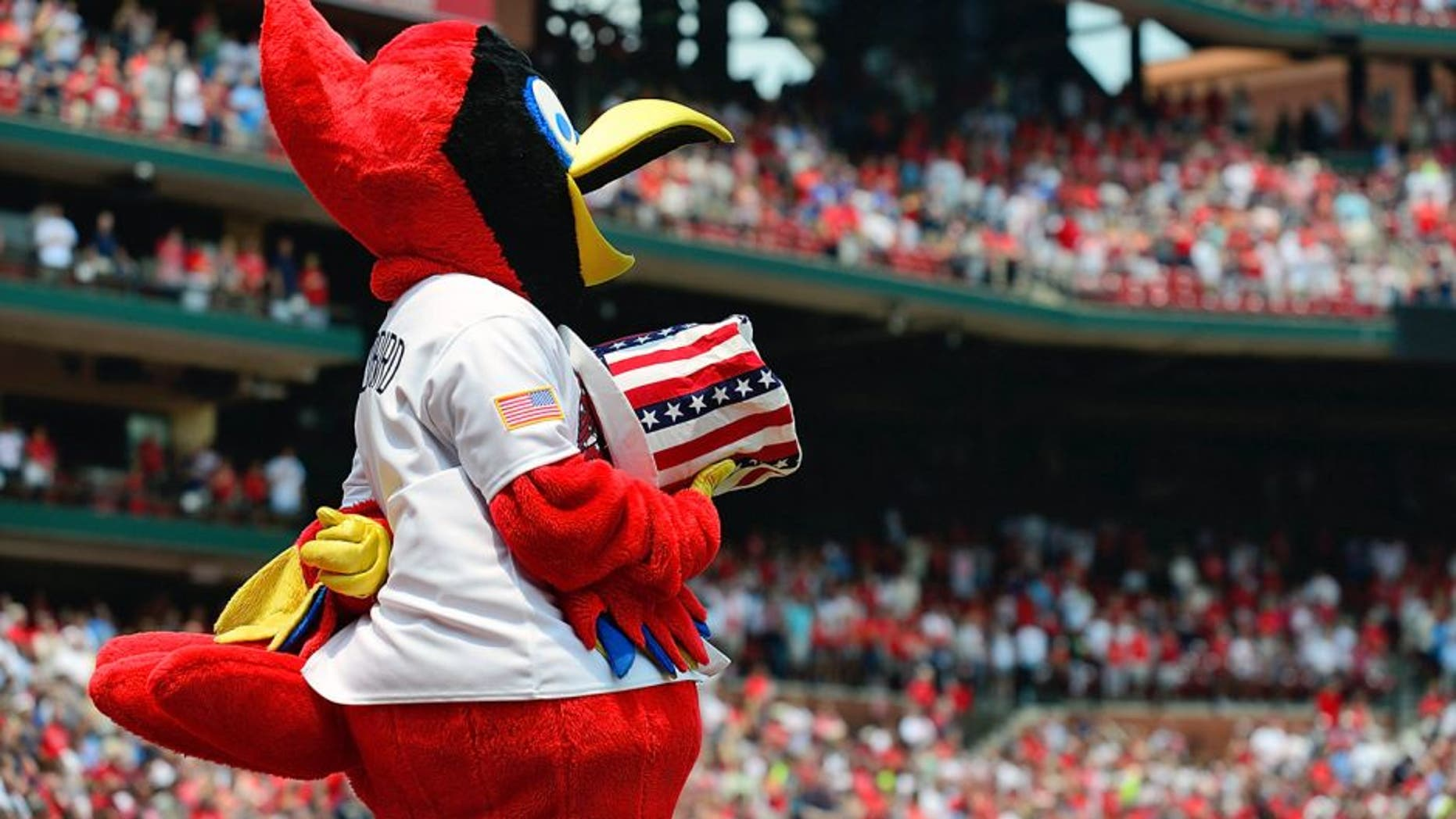 ST. LOUIS, MO - JULY 4: St. Louis Cardinals mascot Fredbird listens to the National Anthem before a game against the San Diego Padres at Busch Stadium on July 4, 2015 in St. Louis, Missouri. (Photo by Jeff Curry/Getty Images)