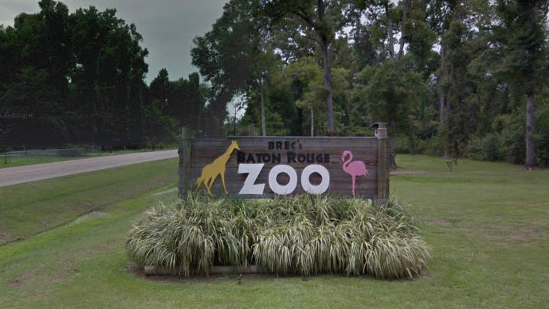 Baton Rouge Zoo.