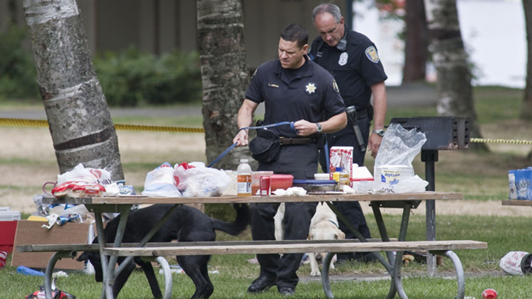 July 18: King County Sheriff's Deputy Tim Morgan, foreground, and Seattle Police Officer Craig Williamson and their respective search dogs comb through the effects of people who were forced to leave their belongings behind following a Saturday night fatal shooting at Lake Sammamish State Park in Issaquah, Wash.