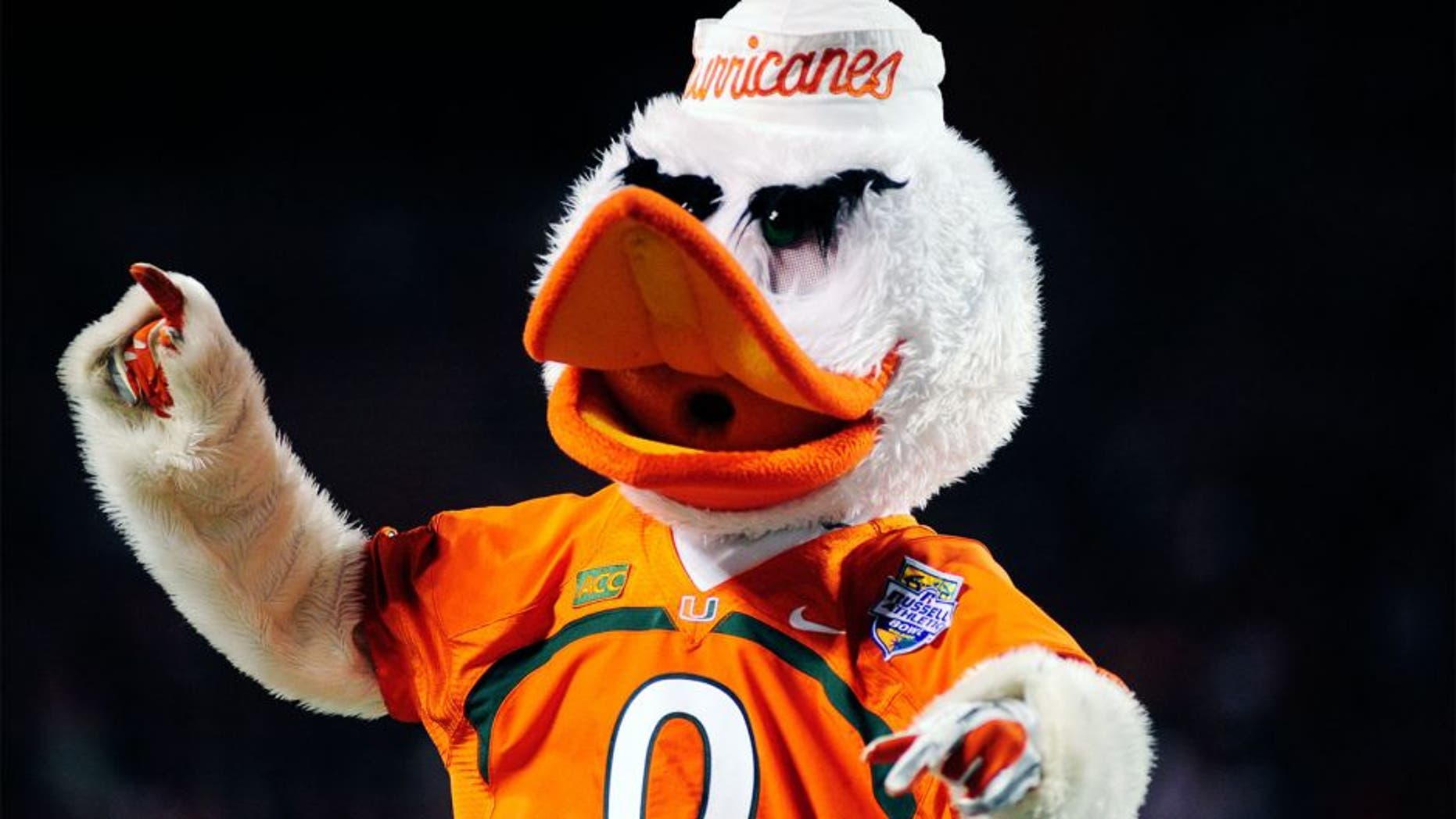 Dec 28, 2013; Orlando, FL, USA; Sebastian the Ibis, mascot of the Miami Hurricanes, cheers during the Russell Athletic Bowl at Florida Citrus Bowl Stadium. Mandatory Credit: David Manning-USA TODAY Sports