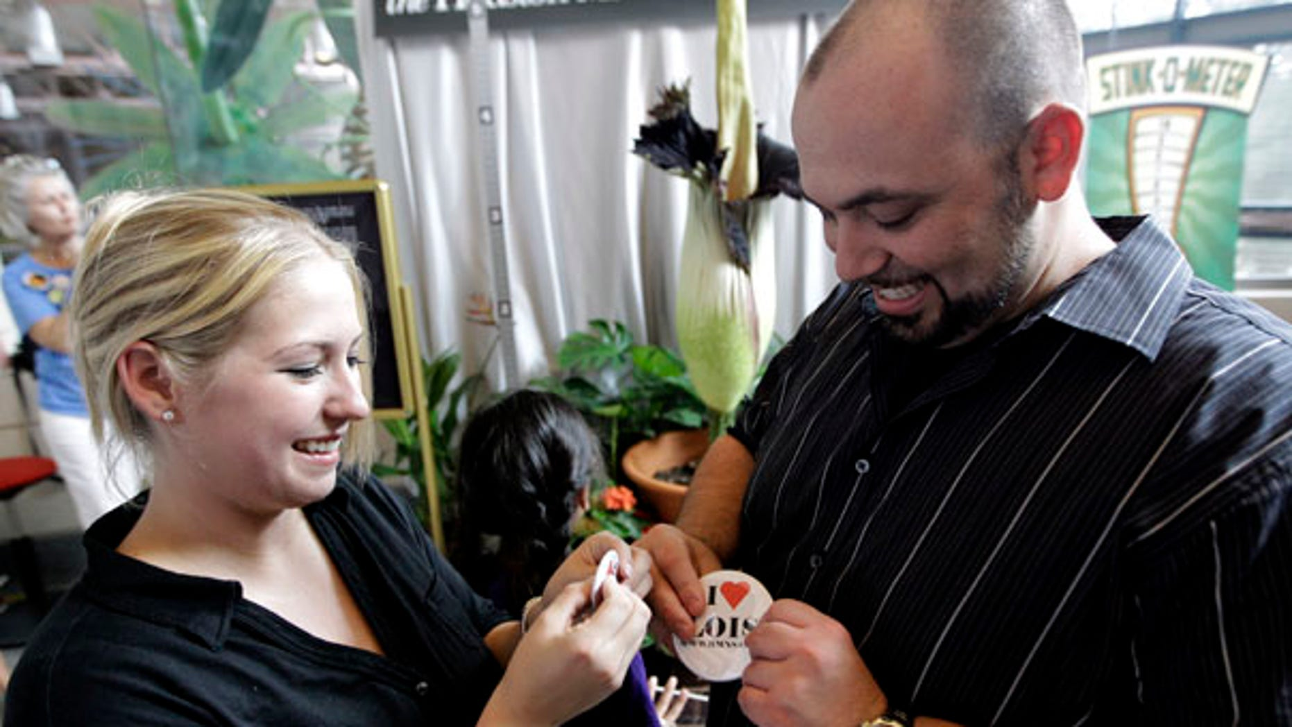 """July 22: Jessica Zabala, left, and her fiance Jonathan Smith pin buttons on as they stand near """"Lois"""", a rare """"corpse"""" flower blooming at the Houston Museum of Natural Science. The couple is set to be married Saturday at the museum and hope the smell from the plant will not be too strong."""