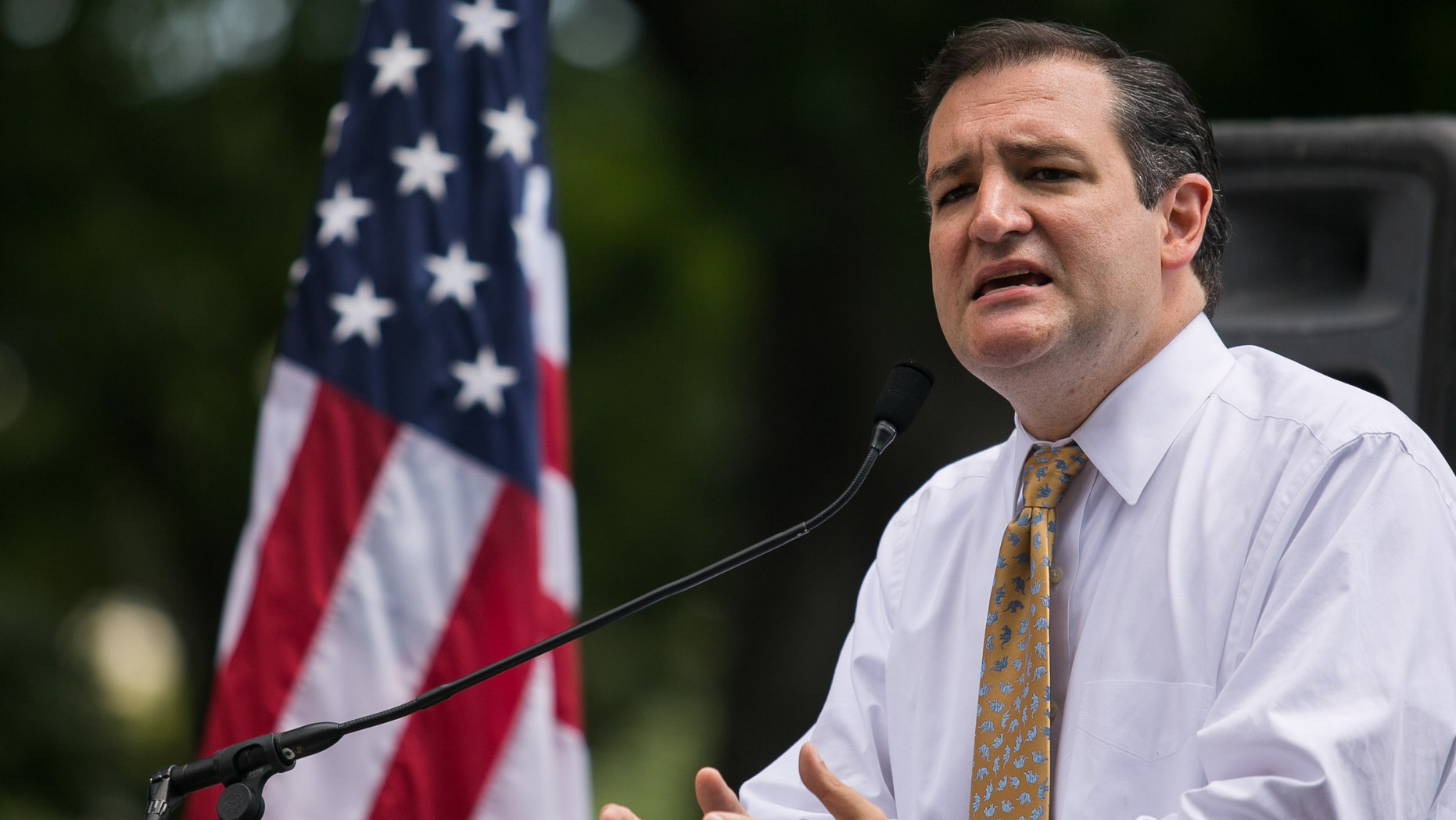 WASHINGTON, DC - JULY 15: Sen. Ted Cruz (R-TX) speaks about immigration during the DC March for Jobs in Upper Senate Park near Capitol Hill, on July 15, 2013 in Washington, DC. Conservative activists and supporters rallied against the Senate's immigration legislation and the impact illegal immigration has on reduced wages and employment opportunities for some Americans. (Photo by Drew Angerer/Getty Images)
