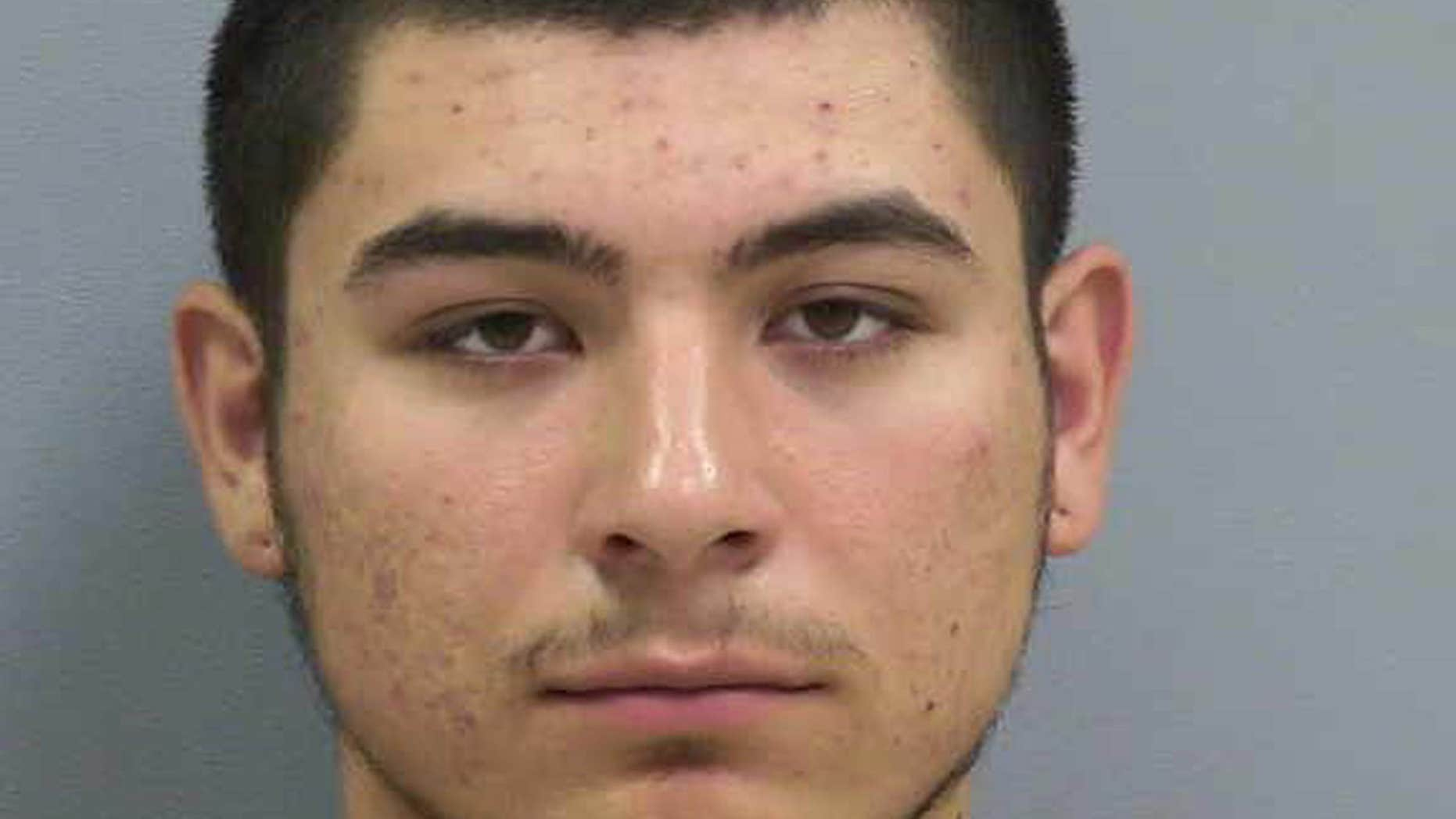 New Mexico Teen Charged With Incest Tried To Save Mom From -1711