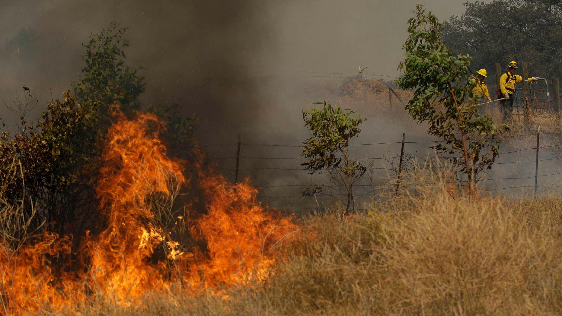 Aug. 12, 2015: A fire crew works a back fire along Morgan Valley Road near Lower Lake, Calif.