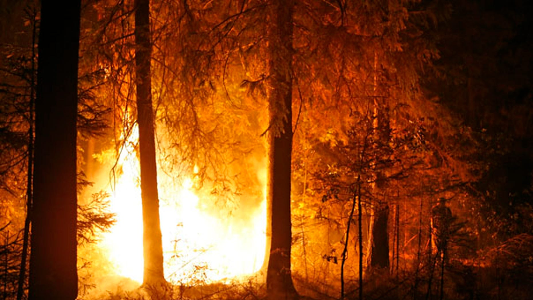 Aug. 13: A volunteer tries to extinguish a forest fire near the village of Kovrigino, about 45 miles east of Moscow.