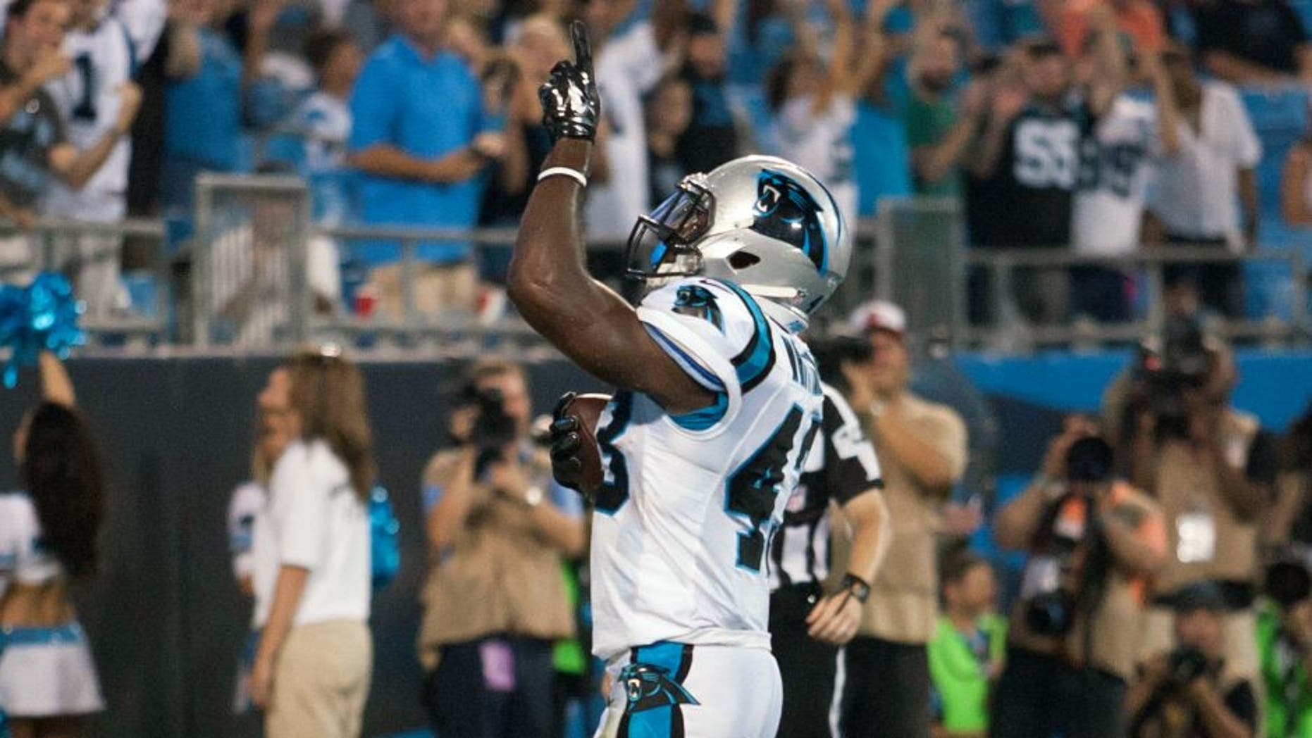 Aug 17, 2014; Charlotte, NC, USA; Carolina Panthers running back Fozzy Whittaker (43) celebrates after scoring a touchdown during the third quarter against the Kansas City Chiefs at Bank of America Stadium. Mandatory Credit: Jeremy Brevard-USA TODAY Sports