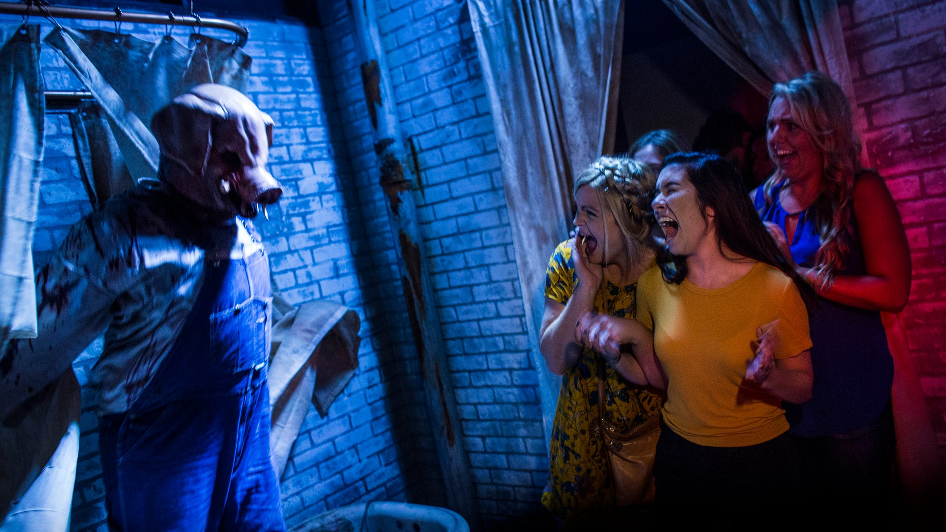 The American Horror Story attraction in Orlando may make you scream.