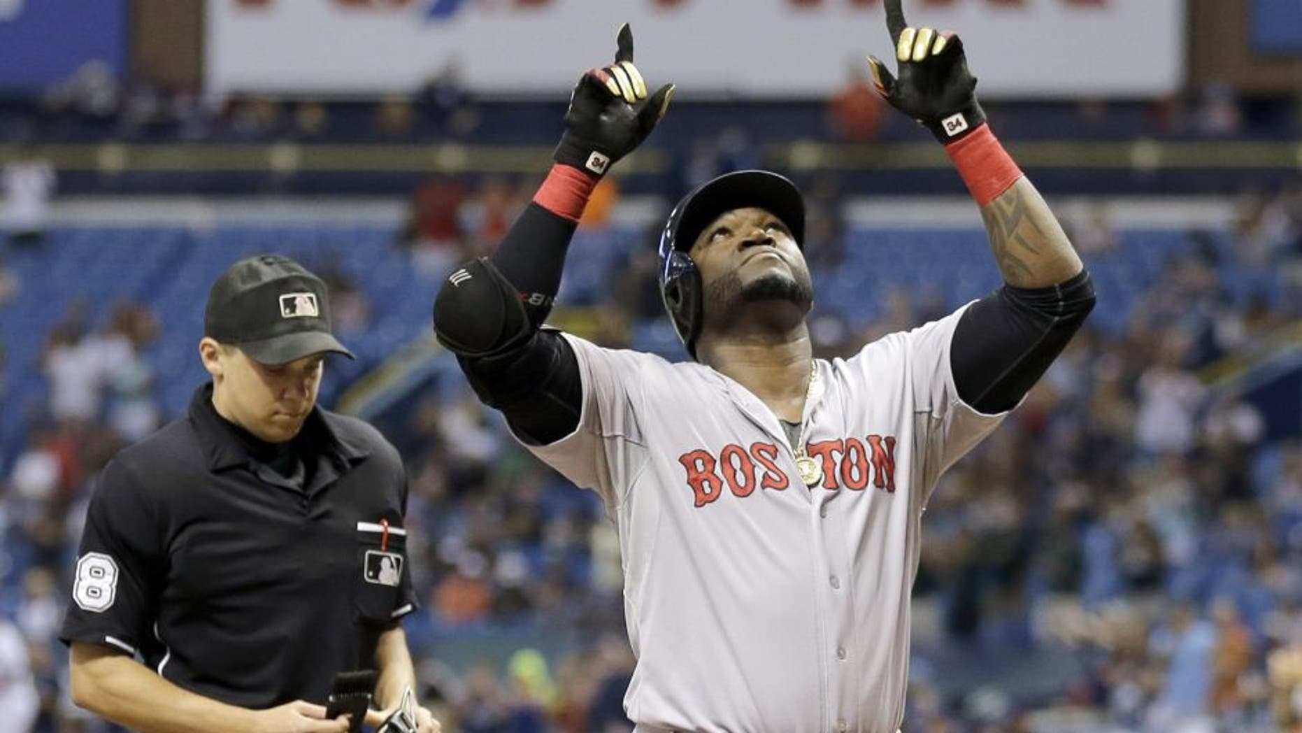 Boston Red Sox's David Ortiz reacts after hitting his 500th career home run off Tampa Bay Rays starting pitcher Matt Moore during the fifth inning of a baseball game Saturday, Sept. 12, 2015, in St. Petersburg, Fla. looking on is home plate umpire Adam Hamari. (AP Photo/Chris O'Meara)