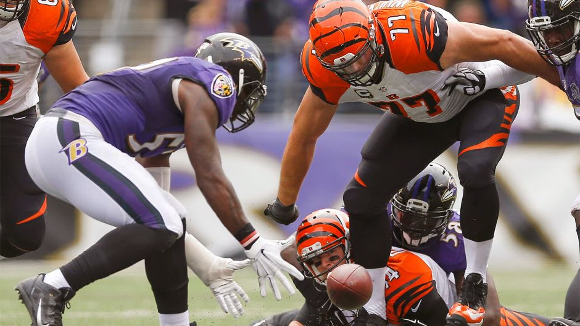 Baltimore Ravens inside linebacker C.J. Mosley (57) under pressure from Cincinnati Bengals tackle Andrew Whitworth (77) scoops up a fumble by quarterback Andy Dalton (14) and carries into the end zone for a touchdown during the second half of an NFL football game in Baltimore, Sunday, Sept. 27, 2015. (AP Photo/Patrick Semansky)