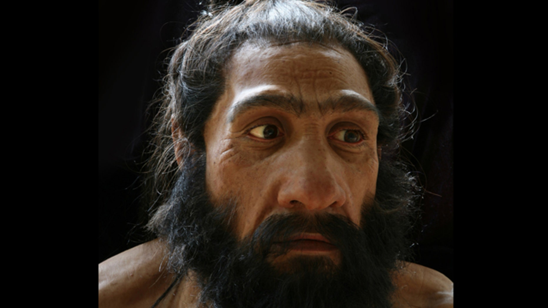 Hyper-realistic busts of human ancestors -- like this version of homo neandertal -- give us a glimpse of what our ancient relatives may have looked like.