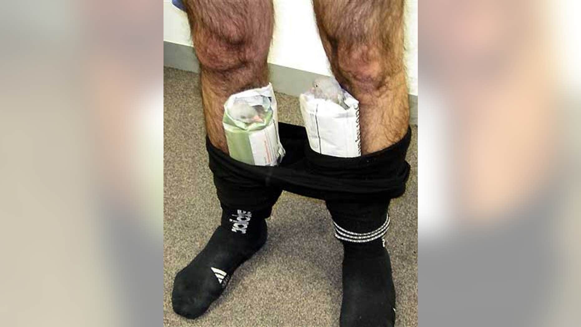 Feb. 1: An Australian man was caught with two pigeons hidden in his pants on an international flight from Dubai to Melbourne, Australia.