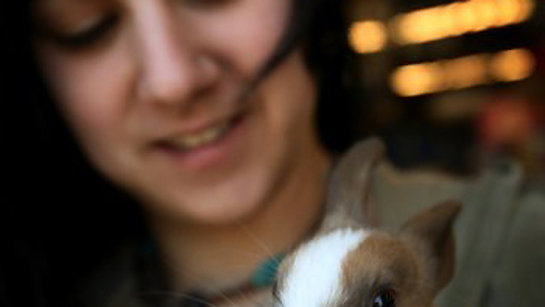 March 31, 2009: Iris Bergeron, an employee of Purr-Fect Pets in Milford, Conn. holds a bunny that has two noses in Milford, Conn.