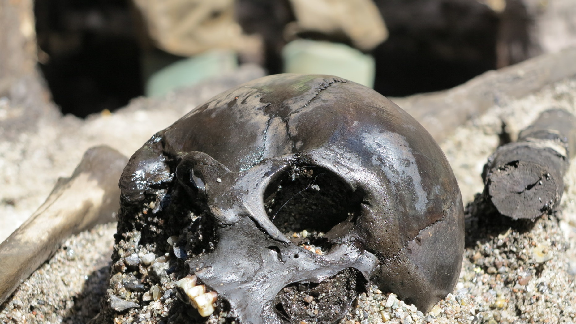 A mass grave uncovered at the Alken Enge wetlands in Jutland, Denmark is giving archaeologists a glimpse into the gruesome post-war practices of Germanic armies.
