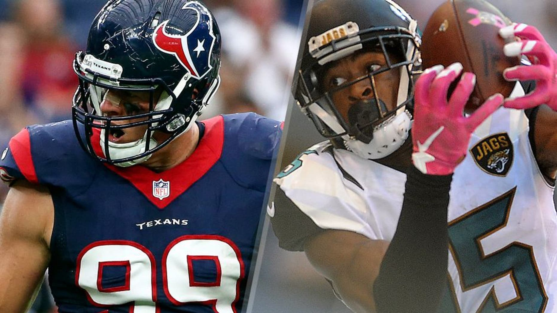 Houston Texans defensive end J.J. Watt (99) reacts during the game against the Tampa Bay Buccaneers at NRG Stadium. Mandatory Credit: Kevin Jairaj-USA TODAY Sports Jacksonville Jaguars receiver Allen Robinson (15) makes a catch in the second half against the Indianapolis Colts at Lucas Oil Stadium. Mandatory Credit: Thomas J. Russo-USA TODAY Sports