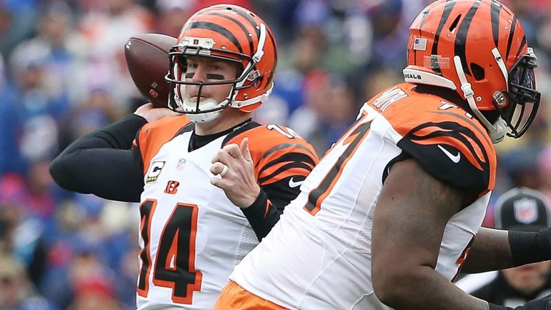 ORCHARD PARK, NY - OCTOBER 18: Andy Dalton #14 of the Cincinnati Bengals looks to throw against the Buffalo Bills during the first half at Ralph Wilson Stadium on October 18, 2015 in Orchard Park, New York. (Photo by Tom Szczerbowski/Getty Images)