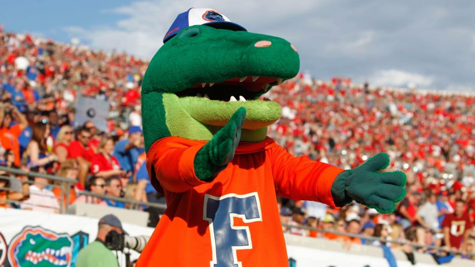 Nov 2, 2013; Jacksonville, FL, USA; Florida Gators mascot, Albert, against the Georgia Bulldogs during the second quarter at EverBank Field. Mandatory Credit: Kim Klement-USA TODAY Sports