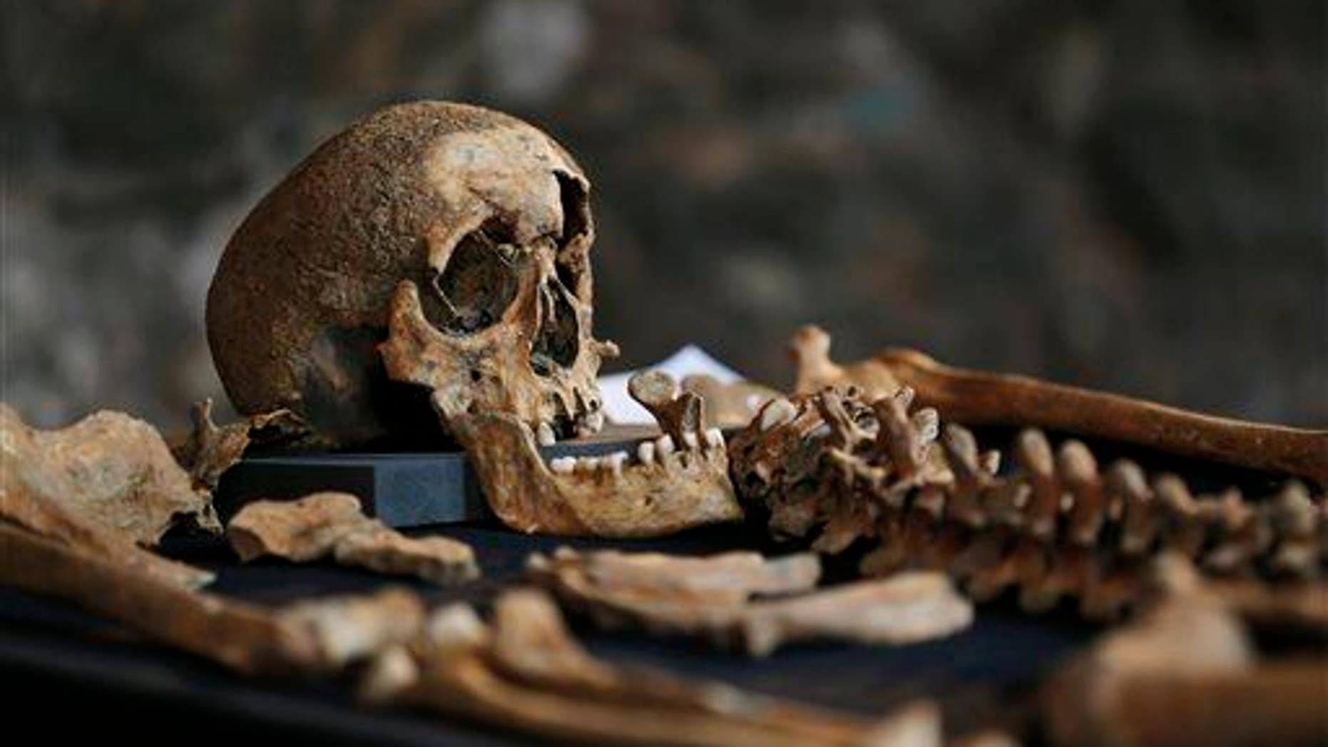 The bones of a suspected victim of the bubonic plague are seen in London.