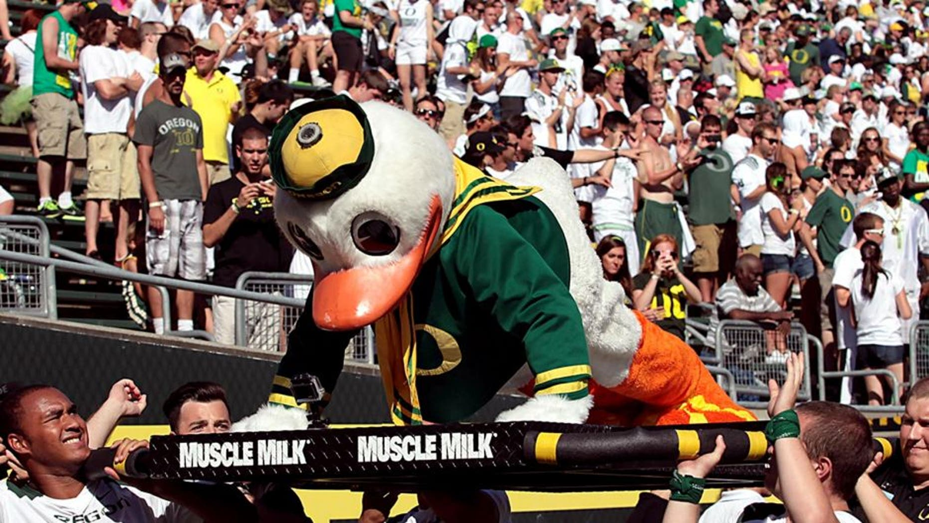 Aug 31, 2013; Eugene, OR, USA; Oregon Ducks mascot does pushups following a touchdown against the Nicholls State Colonels at Autzen Stadium. Mandatory Credit: Scott Olmos-USA TODAY Sports