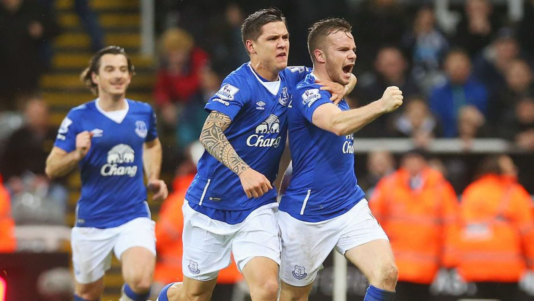 NEWCASTLE UPON TYNE, ENGLAND - DECEMBER 26: Tom Cleverley of Everton (R) celebrates with team mate Muhamed Besic as he scores their first goal during the Barclays Premier League match between Newcastle United and Everton at St James' Park on December 26, 2015 in Newcastle upon Tyne, England. (Photo by Ian MacNicol/Getty Images)