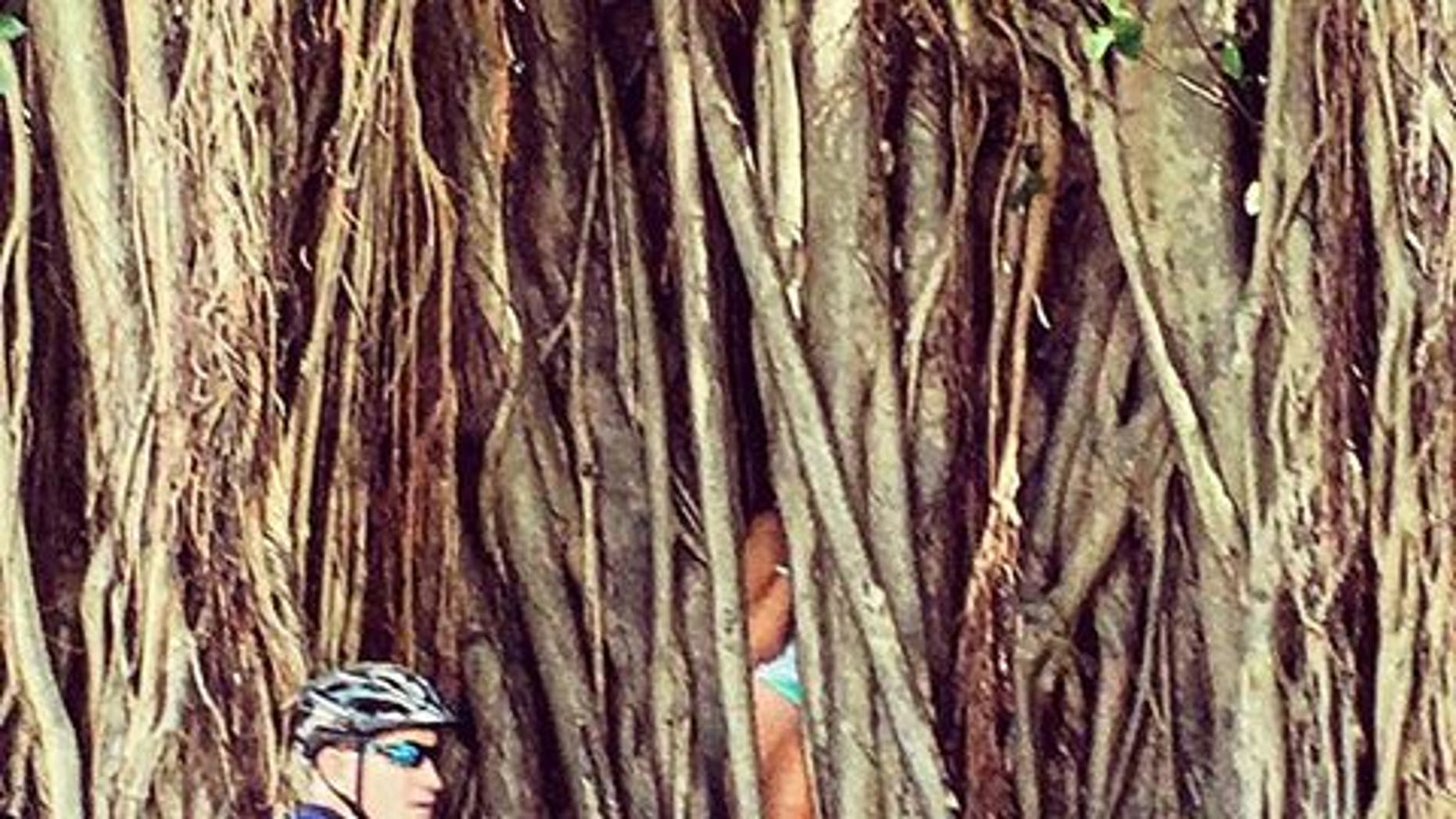 A woman became stuck inside a banyan tree.
