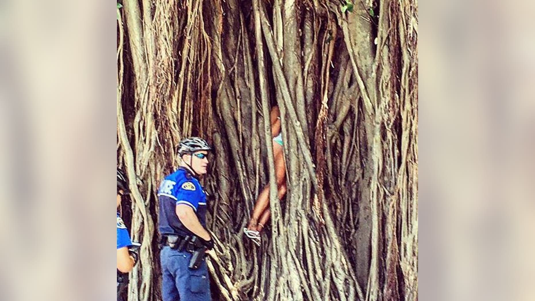 A woman became stuck inside a banyan tree.