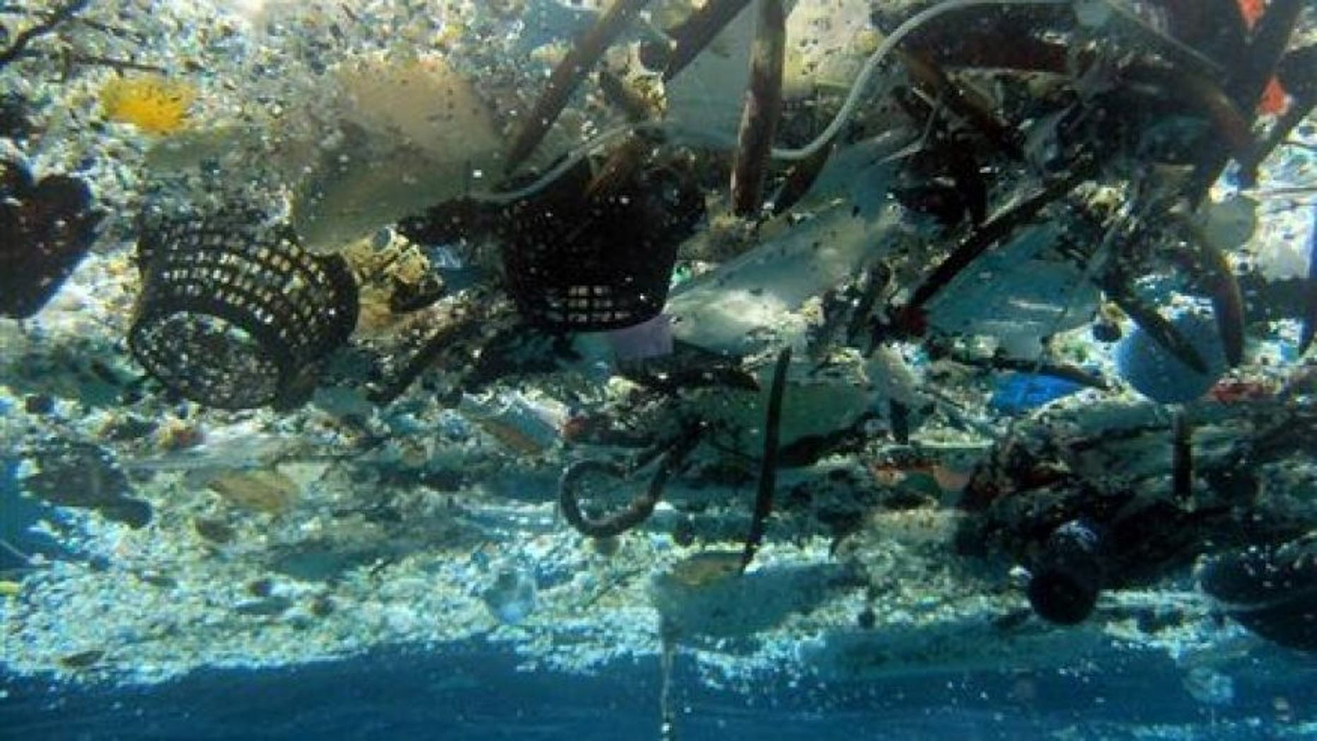 """A """"floating"""" island of trash dubbed the Great Pacific Garbage Patch (GPGP) now stretches 600,000 square miles."""