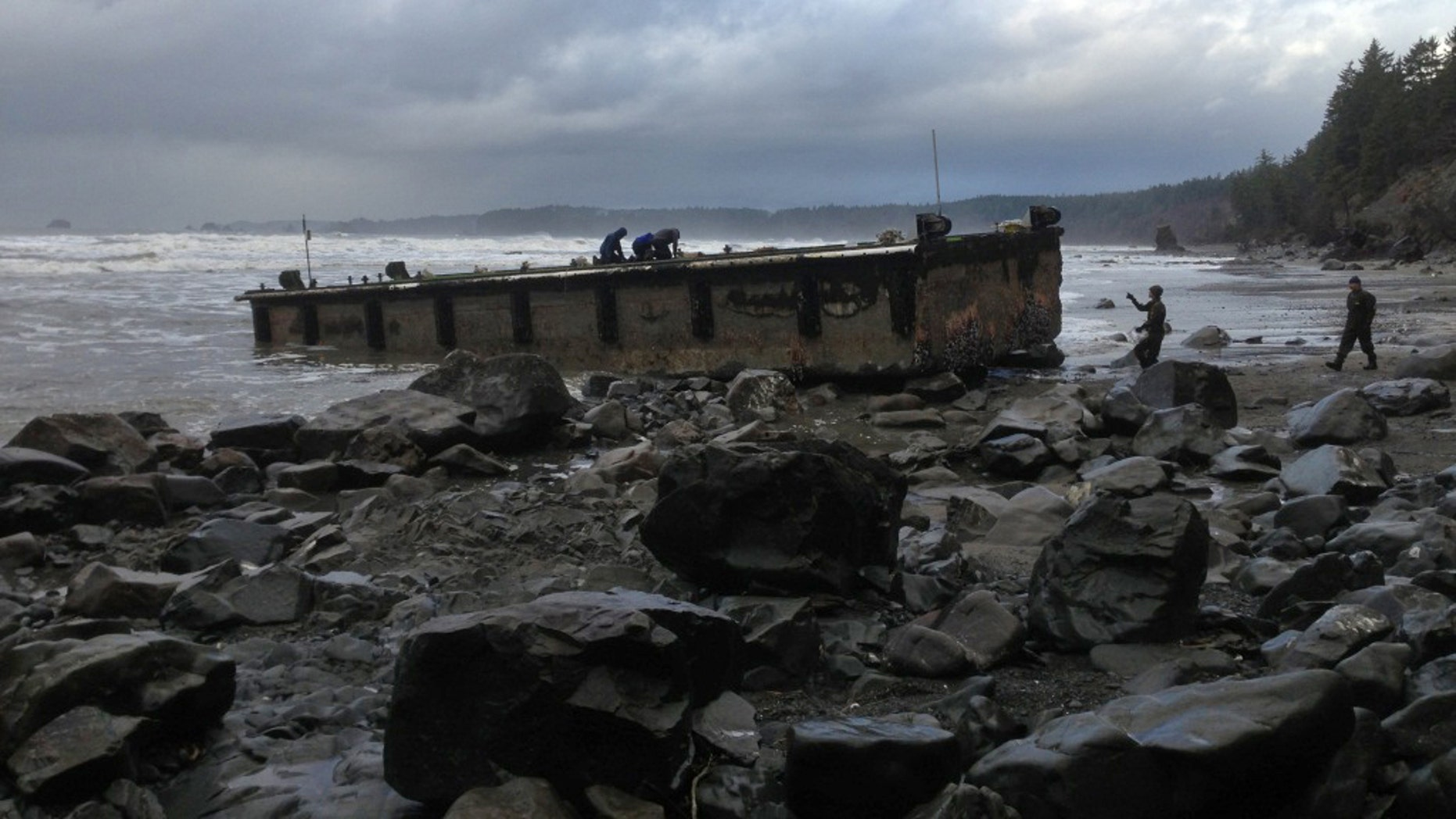 In this Dec. 21, 2012 file photo provided by the Washington Dept. of Fish & Wildlife, scientists inspect a dock that floated up on a remote stretch of wilderness beach in northwestern Washington. A scientist who examined the dock says it looks just like the one that came ashore on a central Oregon beach last summer, suggesting it also is a piece of tsunami debris from Japan. (AP Photo/Washington Dept. of Fish & Wildlife)